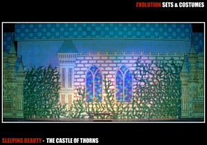 The Castle of Thorns